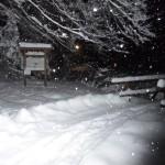 Winterspaziergang - Am Römerweg